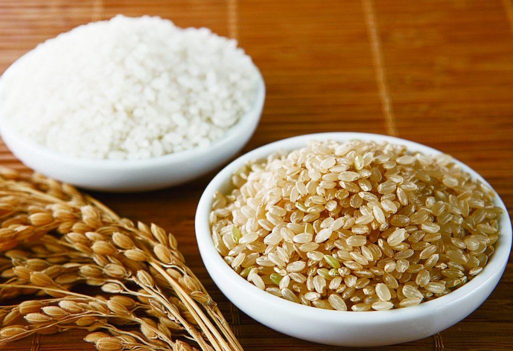 食用酵素活米-发芽玄米 活化健康人生