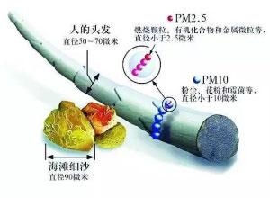 PM2.5和PM10有什么区别?