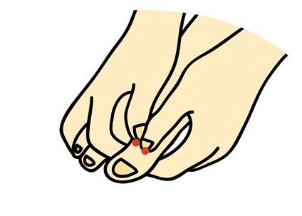 扁桃腺反射区