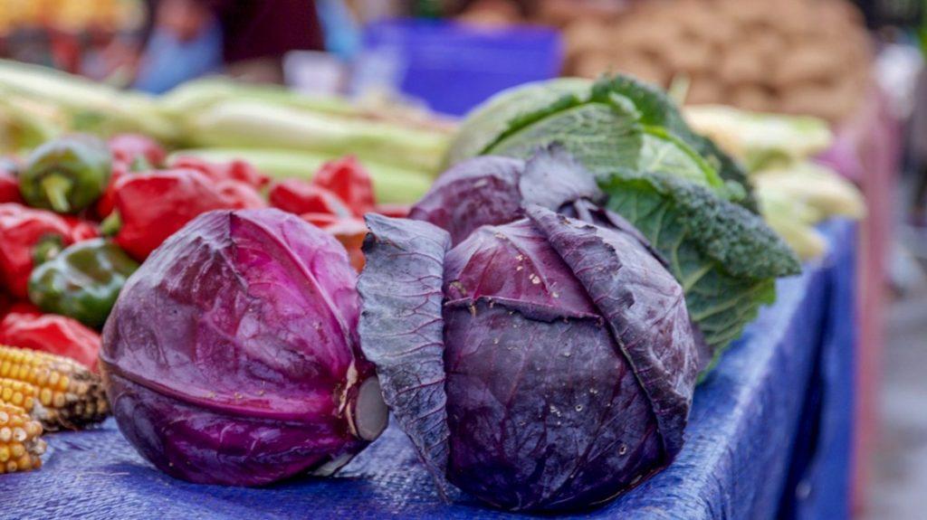紫甘蓝的营养价值