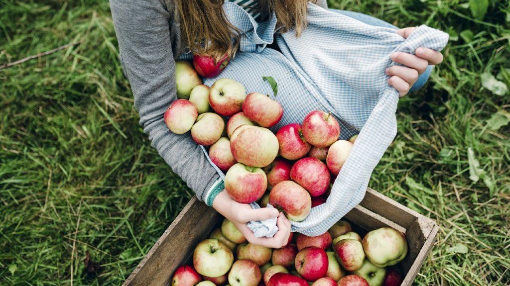 科学研究证实的苹果醋6种健康益处