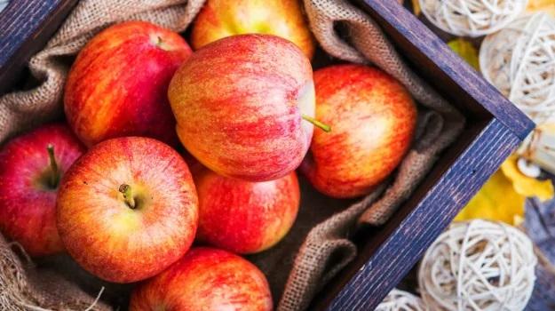 想知道苹果是如何帮助你保持肺部健康的吗?
