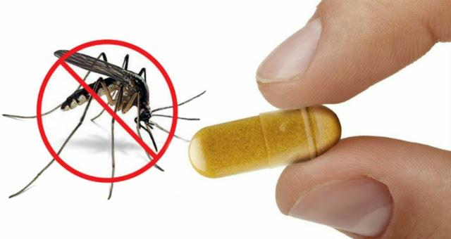 服用维生素B1可以防止蚊虫叮咬吗?