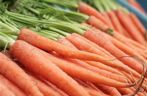 口臭的原因及预防口臭最好的食物是什么?