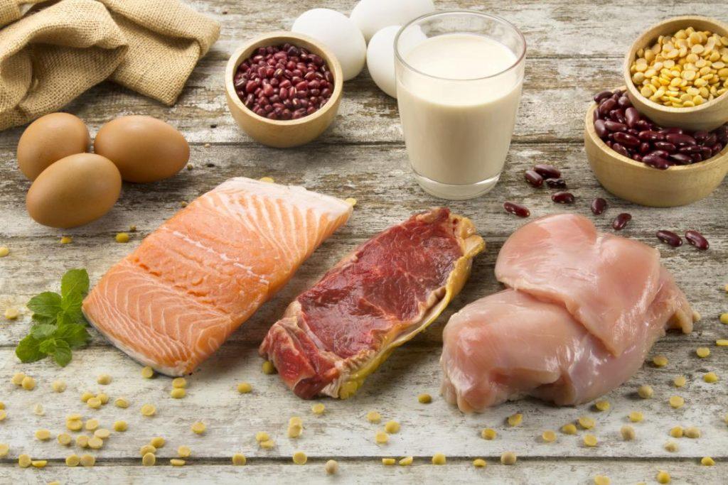 动物蛋白和植物蛋白有什么区别?