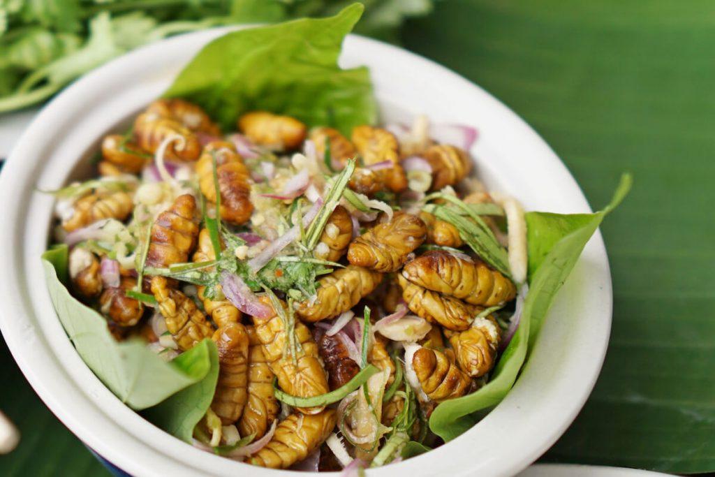 食物的未来:吃蚕可以给我们的健康带来什么好处?