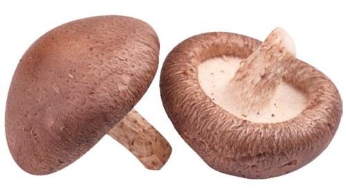 香菇煮粥防4种癌症!干香菇这样泡发防癌效果最佳