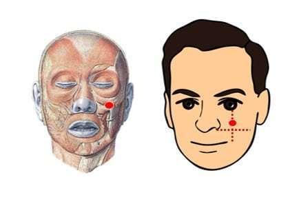 天气一变鼻塞准时报到?脸上2个筋膜点,按1分钟就能通畅呼吸