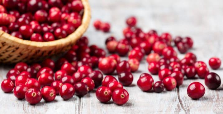 蔓越莓的功效与作用:对健康的6大好处