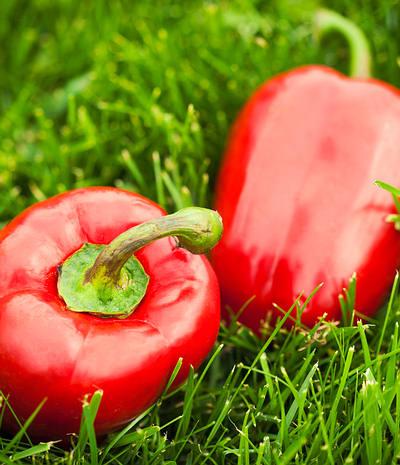 日常生活中10种有益于预防感冒的食物