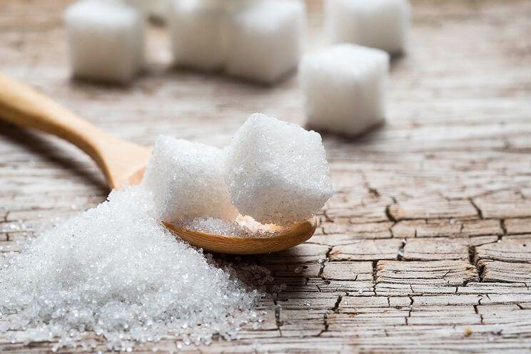 念珠菌饮食:饮食指南及需要避免的食物
