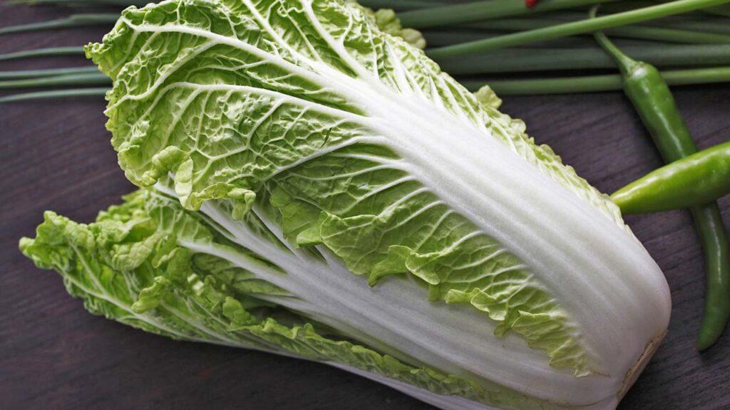 纤维比高丽菜更细!大白菜5大好处排进抗癌明星队