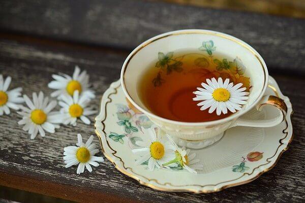 越喝越美丽!推荐5种女生必喝的花草茶