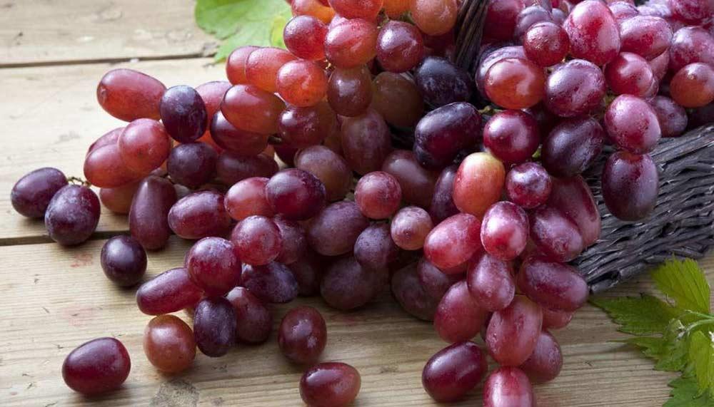 葡萄是可食用防晒乳!研究:14天皮肤抗紫外线能力提升74.8%