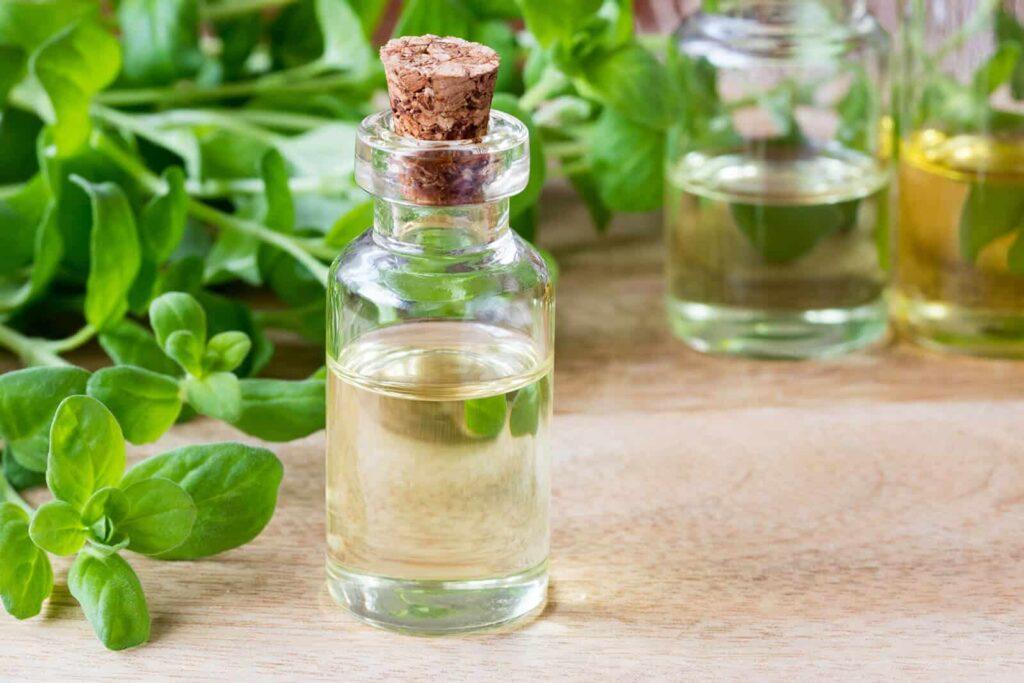 马郁兰精油有助于改善消化和心脏健康